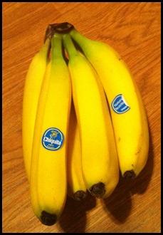 grocery pics 002
