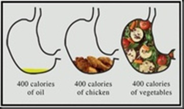 stomach comparison